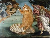 Botticelli, The Birth of Venus / ,  