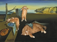 Salvador Dali, The Persistence of Memory /  ,  