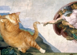 Michelangelo, The Creation of cAt-dam