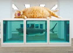 Damien Hirst, The Physical Impossibility of Falling Down in the Mind of Someone Sleeping