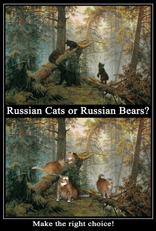 Russian Cats or Russian Bears