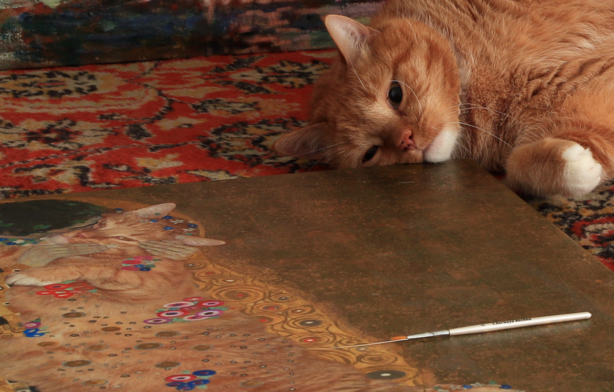 Zarathustra the Cat's whiskers brush