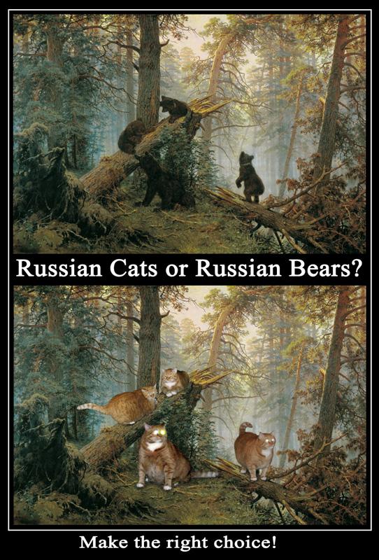 Russian Cats or Russian Bears