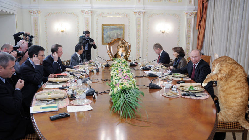 Cats Politicians meet Russian President